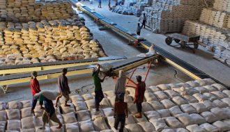 Campuchia tăng cường thúc đẩy xuất khẩu gạo hữu cơ năm 2021