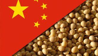 Đậu nành là mặt hàng thúc đẩy tăng trưởng thị trường nông sản toàn cầu
