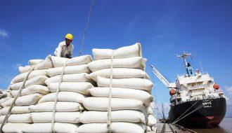 Giá trị xuất khẩu gạo của Việt Nam năm 2020 tăng vượt hơn 6 triệu tấn