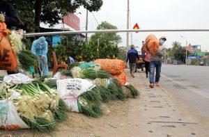 Các giải pháp giúp nông dân tiêu thụ nông sản khi dịch bệnh