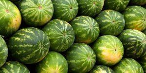 Dưa hấu là loại quả mát, bổ dưỡng.