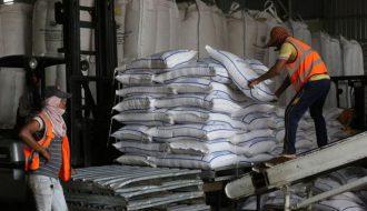 Những bước đột phá trong trong thị trường xuất khẩu gạo Campuchia