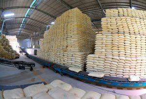 Xuất khẩu gạo Thái Lan giảm xuống mức thấp nhất