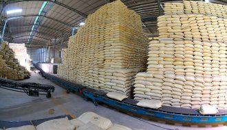 Tại sao thị trường xuất khẩu gạo Thái Lan thấp kỷ lục trong 10 năm qua?