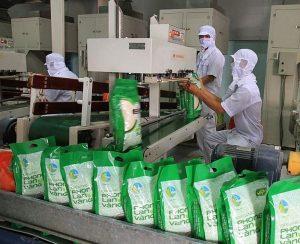 UKVFTA giúp xuất khẩu gạo rộng cửa vào thị trường Anh Quốc