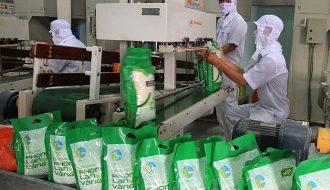 Thị trường Anh Quốc mở rộng cửa chào đón gạo xuất khẩu từ Việt Nam