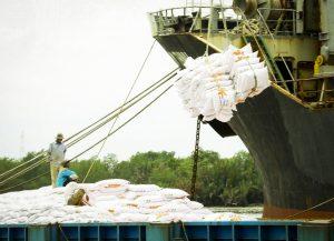 Xuất khẩu gạo của Thái Lan giảm mạnh