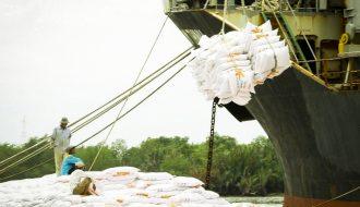 Thị trường xuất khẩu gạo Thái Lan suy giảm đối mặt với nhiều khó khăn
