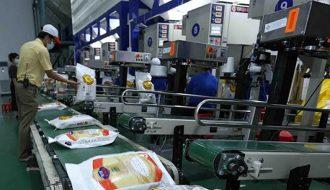 Thị trường xuất khẩu gạo Thái Lan triển vọng đạt 6 triệu tấn trong năm mới