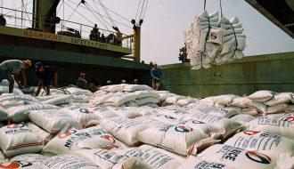 Việt Nam nhập khẩu lúa gạo tấp nập từ Campuchia